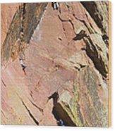 Three Climbers Wood Print