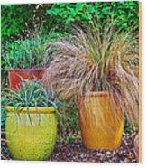 Three Colorful Pots Wood Print