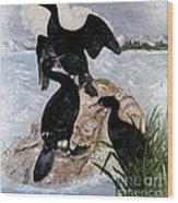 Three Cormorants Wood Print
