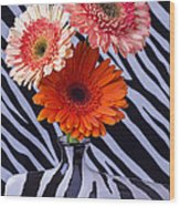 Three Daises In Striped Vase Wood Print
