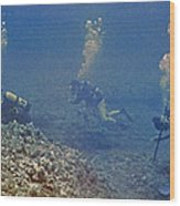 Three Divers In Hawaii Wood Print