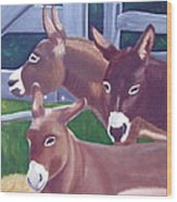 Three Donkeys Wood Print