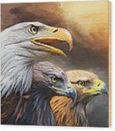 Three Eagles Wood Print