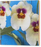 Three Exotic Orchids Wood Print