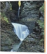 Three Falls In Watkins Glen Wood Print