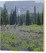 105417-three Fingered Jack And Wildflowers Wood Print