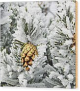 Three Frosty Cones Wood Print