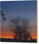 Three Geese At Sunset Wood Print