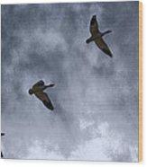 Three Geese Wood Print