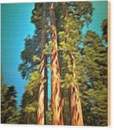 Three Giant Sequoias Digital Wood Print