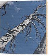 Three Gray Trees Wood Print