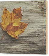 Three Leaves Wood Print