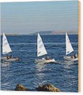 Three Little Boats Wood Print
