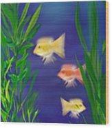 Three Little Fish Wood Print