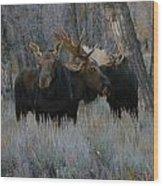 Three Moose In The Woods Wood Print