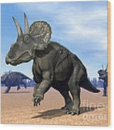 Three Nedoceratops In The Desert Wood Print