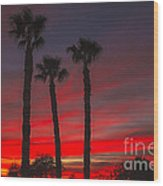 Three Palm Sunset Wood Print
