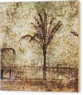 Three Palms 6 Wood Print