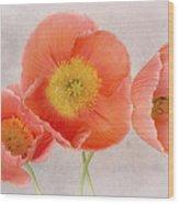 Three Peach Poppies Wood Print