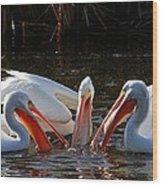 Three Pelicans And A Fish Wood Print
