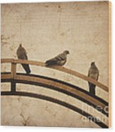 Three Pigeons Perched On A Metallic Arch. Wood Print