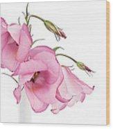 Three Pink Lisianthus Flowers Wood Print