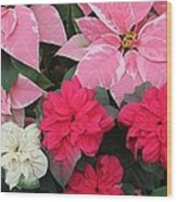 Three Pink Poinsettias Wood Print