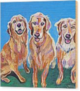 Three Playful Goldens Wood Print