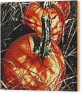 Three Pumpkins Wood Print