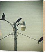 Three Raven Hoedown Wood Print