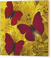 Three Red Butterflys Wood Print