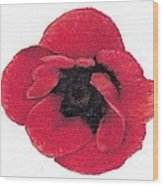 Three Red Poppies Wood Print
