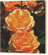 Four Rose At Mcc Wood Print