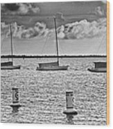 Three Sailboats Wood Print