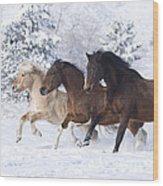 Three Snow Horses Wood Print