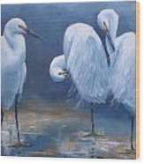 Three Snowy Egrets Wood Print