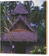Three Story Hut 2 In Color Wood Print
