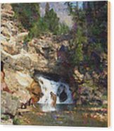 Three Swimmers At Waterfall Pool Wood Print