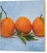 Three Tangerines Wood Print by Alexander Senin