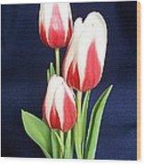 Three Tulips Wood Print