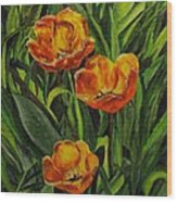 Three Tulips Wood Print