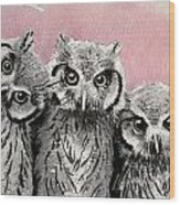 Three Wise Owls Wood Print