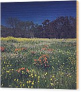Through The Blooming Fields Wood Print