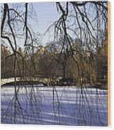 Through The Branches 1 - Central Park - Nyc Wood Print
