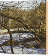 Through The Branches 2 - Central Park - Nyc Wood Print