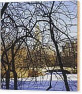 Through The Branches 3 - Central Park - Nyc Wood Print