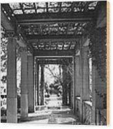Through The Columns Wood Print