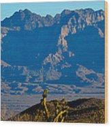 Through The Desert Wood Print
