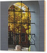 Through The Fence Window Wood Print