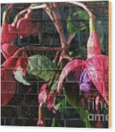 Through The Glass . Texture Wood Print